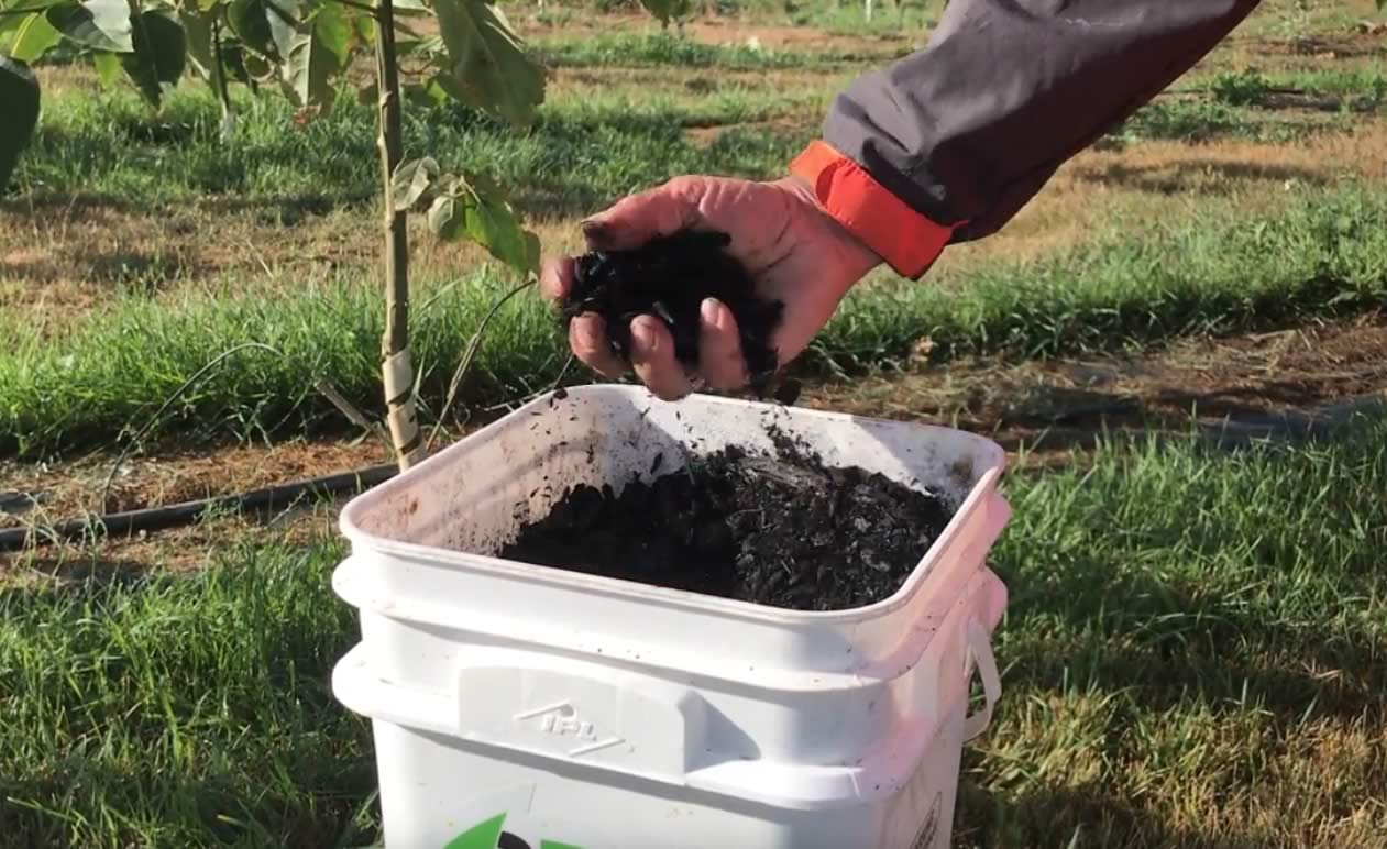 Biochar and Carbon Smart Farming