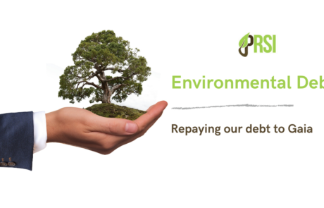 Environmental Debt: Repaying Gaia